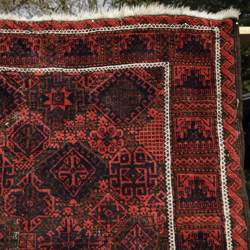 Timuri (Taimuri, Tiemuri) Baluch With Diverse All-over Design